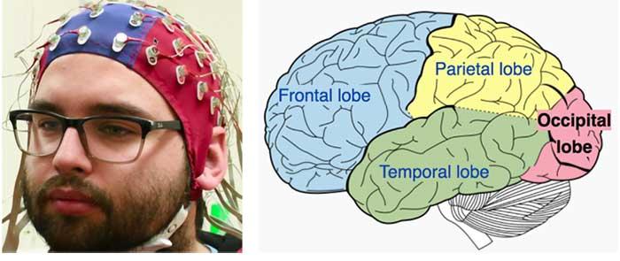 نقشه مغزی یا QEEG چگونه انجام می شود   تفسیر نقشه مغزی